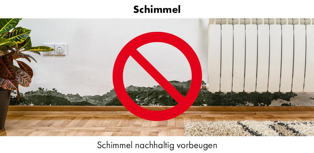 Dry Fy Schimmel